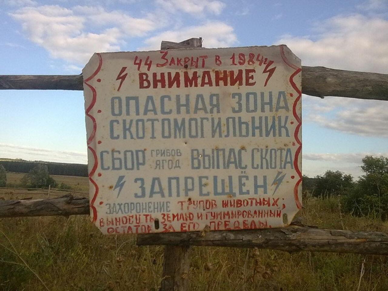 ВПрокопьевском районе отыскали нелегальные захоронения скота