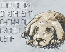 Откровения догхантера: почему он убивает собак