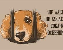 Не лает, не кусает: собачий Освенцим