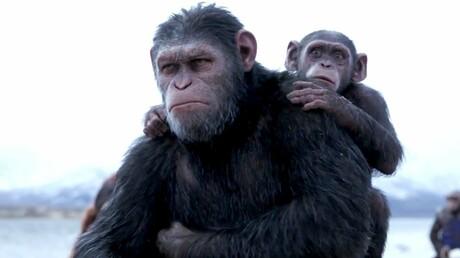 Фильм «Планета обезьян: Война» вСША стал лидером проката