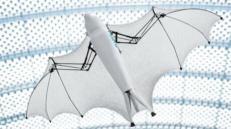 Изобретен робот ввиде летучей лисицы ипаука