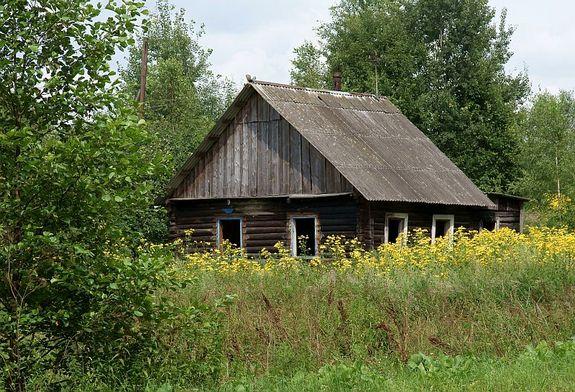 Дома в беларуси фото