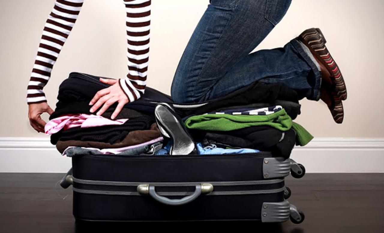 Обезьяны собирают чемоданы чемоданы для ювилирных украшений