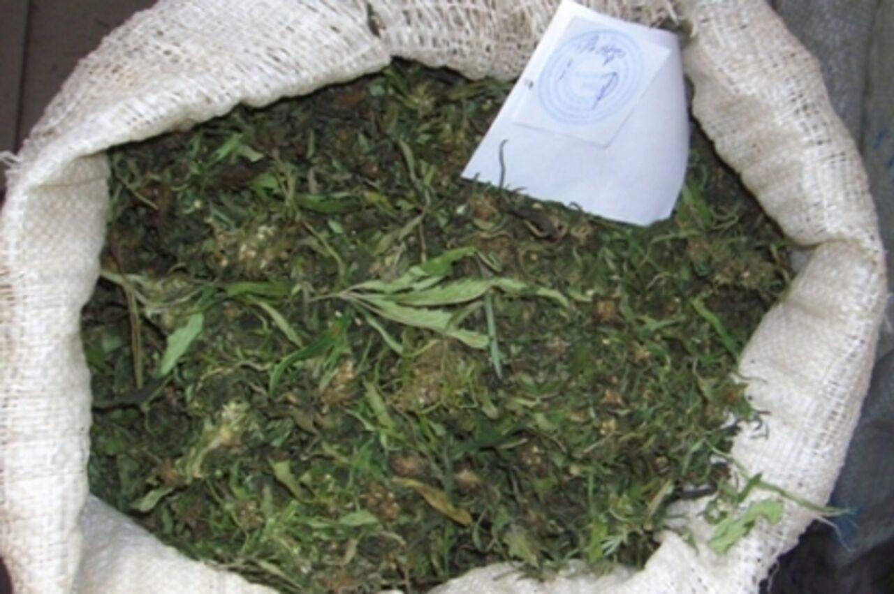 Конопля в прокопьевске песня не кури марихуану скачать