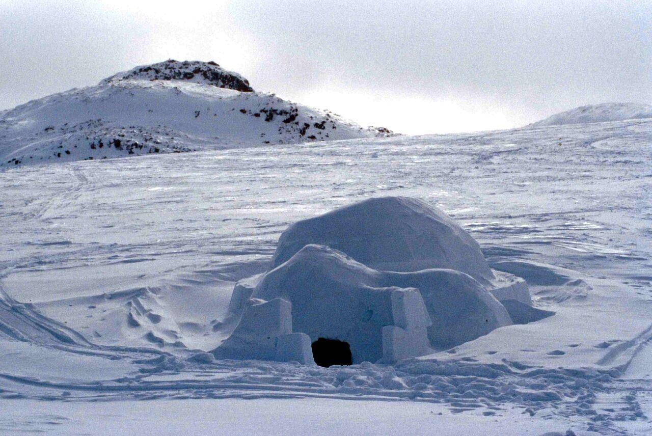 картинки северного полюса с домами знаменитость марки